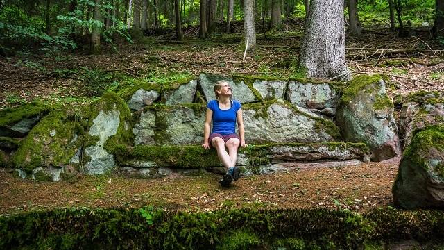 Schwarzwald Gesundheit Waldbaden