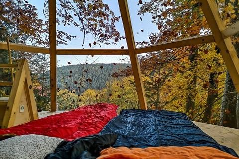 Schwarzwald Übernachten Baumhaus